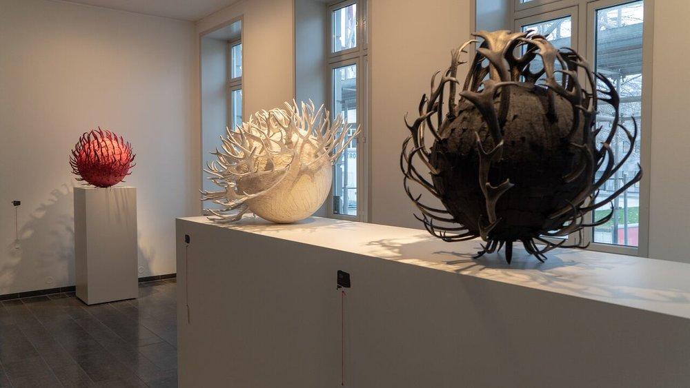 Hornild (2005), Hornbærer (2006) og Hornrose (2006). Foto: Kjetil Rydland/Nordnorsk Kunstmuseum