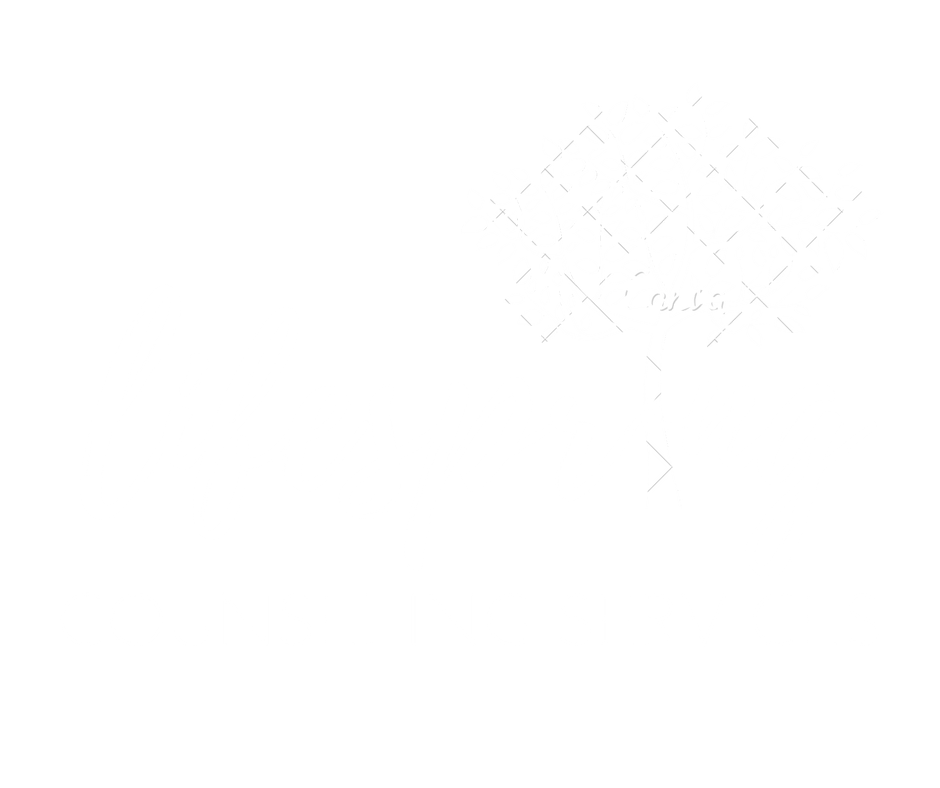 LifeSpring Counseling Services Baltimore, MD
