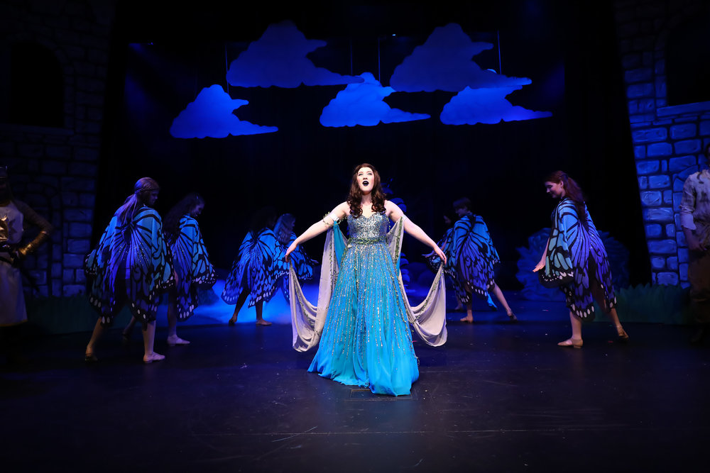 Ludus Performing Arts - SPAMALOT, 2018