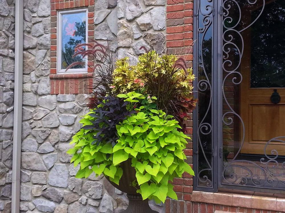 - Annual /Floral Design