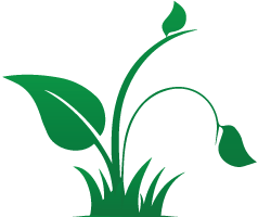 Leaf-left_icon-green.png