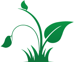 Leaf-right_icon-green.png
