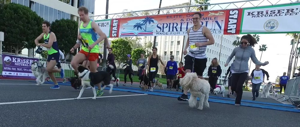 Spirit Run 2018 dog mile start.jpg