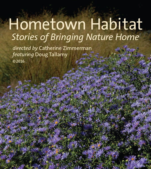 Join us for a screening... our treat! - Individual Differences at Work sponsors  screenings of Hometown Habitat: Bringing Nature Home. This 90-minute environmental documentary produced by award-winning filmmaker, Catherine Zimmerman, focuses on showing how and why native plants are critical to the survival and vitality of local ecosystems. The inspirational stories of community commitment to conservation landscaping show how humans and nature can co-exist with mutual benefits.