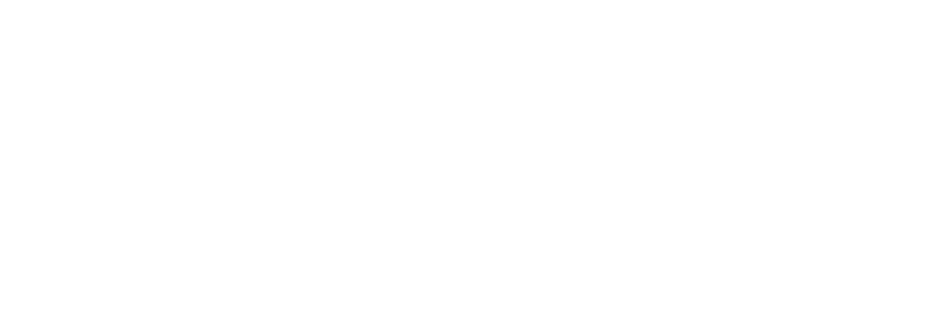 Albania's Business Generation