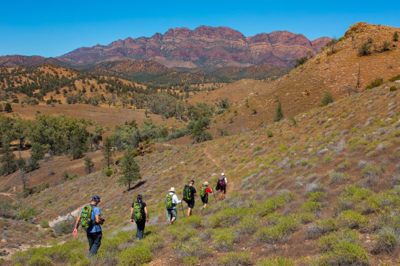 Flinders-Ranges-Walking-Tour-with-Park-Trek-Amazing-escarpments.jpg