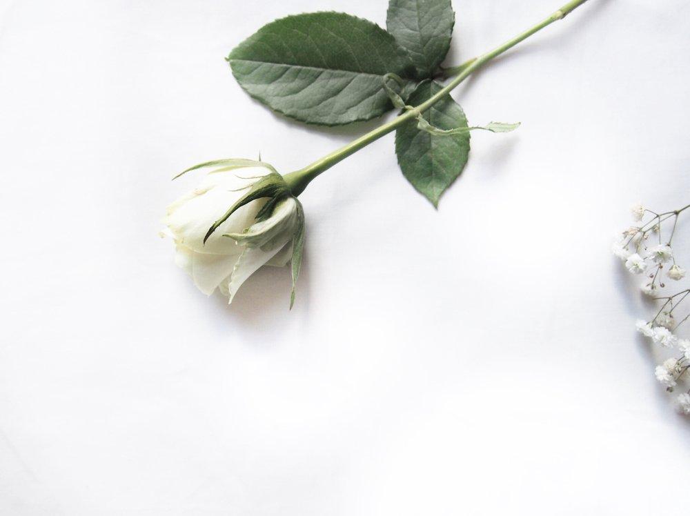 7-ways-to-spread-eco-love.jpg