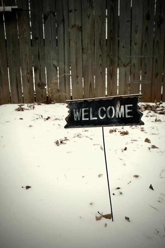 01-Backyard-welcome.jpg