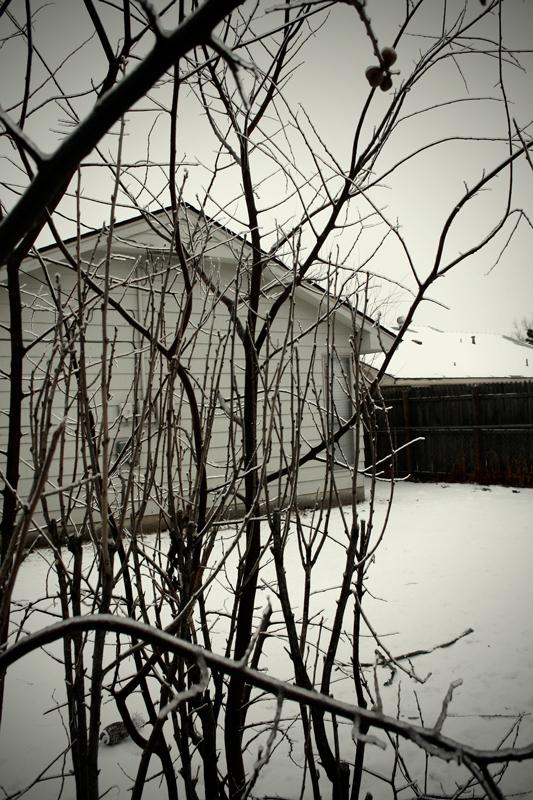 02-Neighbors.jpg