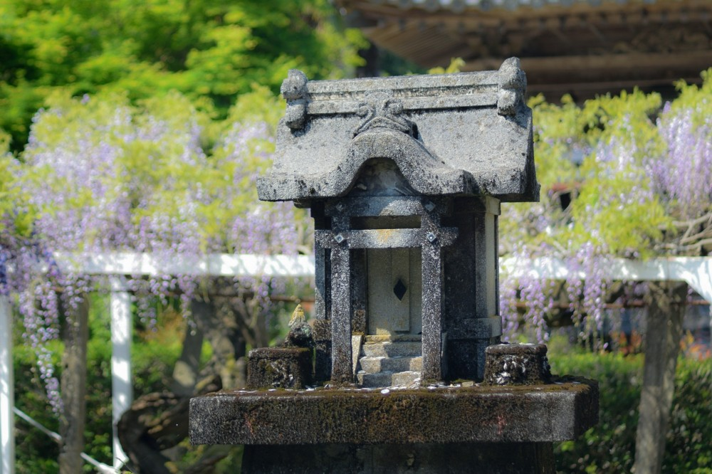 tokushima-shikoku-pilgrimage-temple-no-11-124035.jpg
