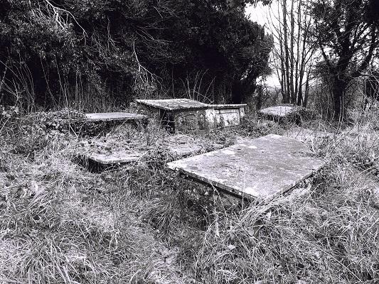 graveswampSML.jpg