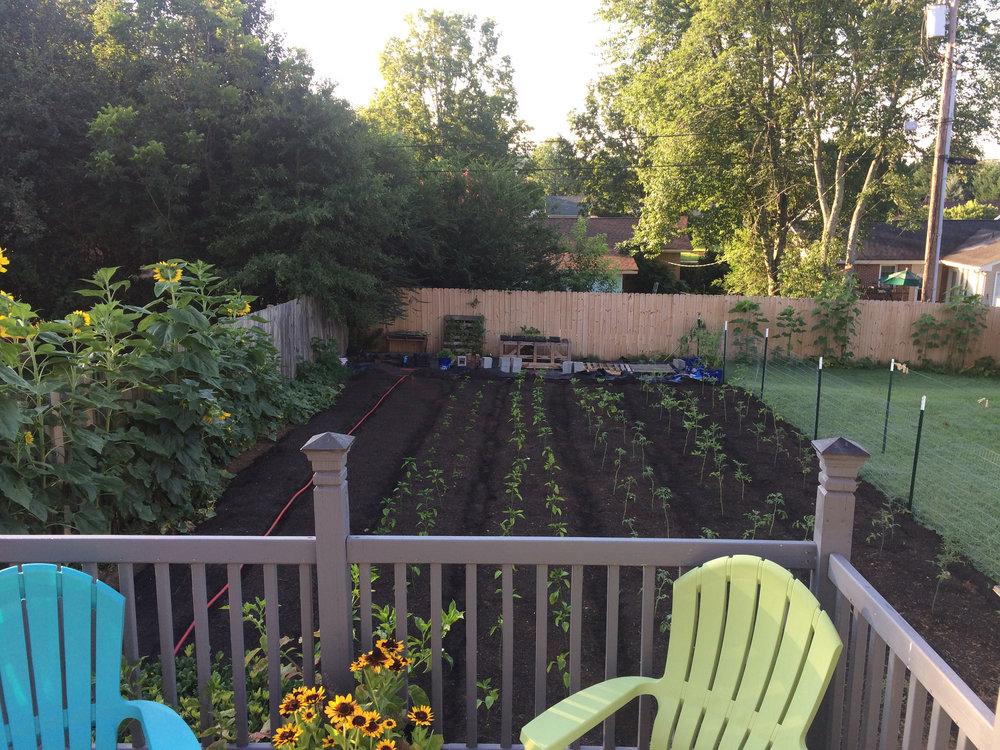 That Garden Guy41.jpg