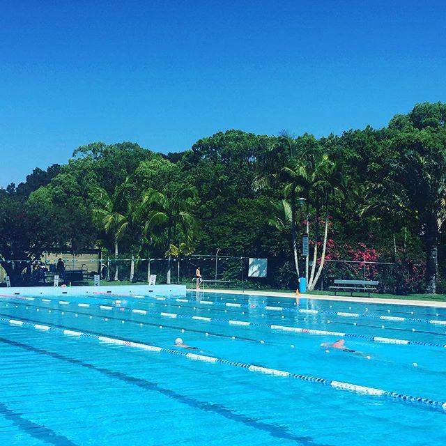 Morning swim. Bliss 💦☀️ #mullumbimbypool #morningsunshine #blueskies #springholiday #lovinglife #exercisemotivation #naturalmovement #byronbay