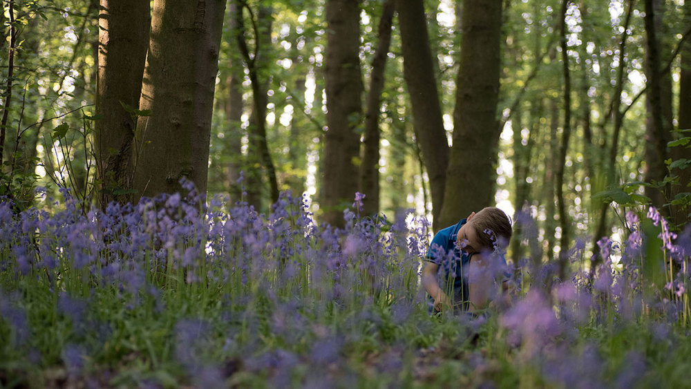 Having a little time for reflection after being busy exploring the bluebells.