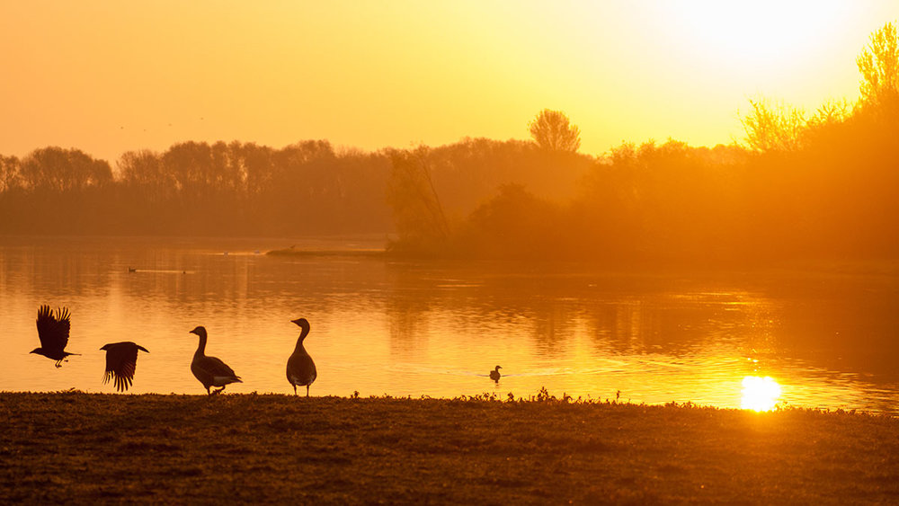 A stunning sunrise over the main lake at Colwick Country Park in Nottingham