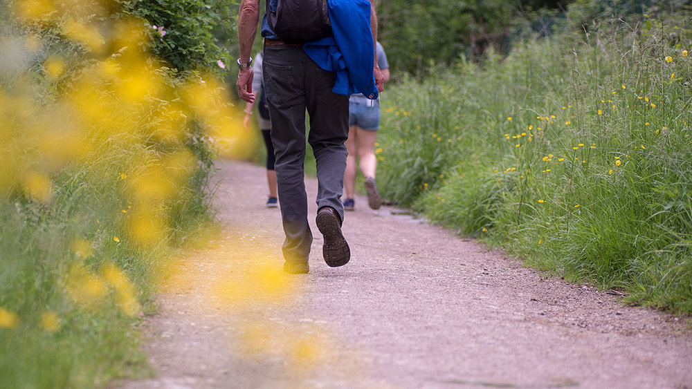 With well-maintained and well sign-posted footpaths, Shipley Country Park is a fantastic place for a relaxed, family walk or explore.