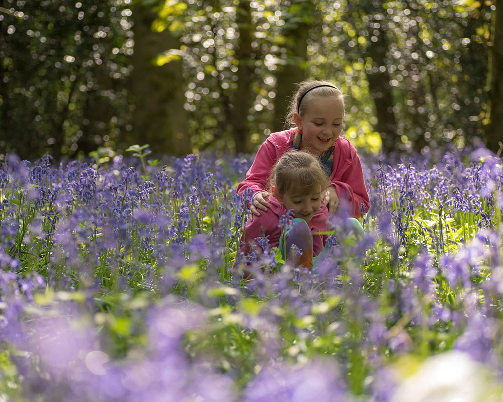 It was lovely to see Jessica and her sister out, running around and enjoying the bluebell wood - they're such inquisitive young ladies!