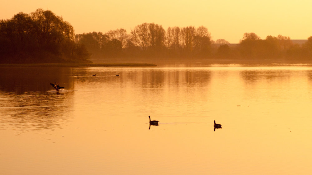 We love the sunsets at this time of year - here's one over a lake in Colwick Country Park, Nottingham