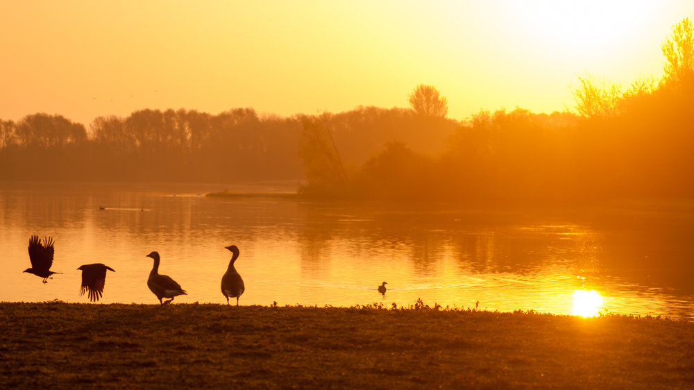 Colwick Country Park, Nottingham at sunrise.