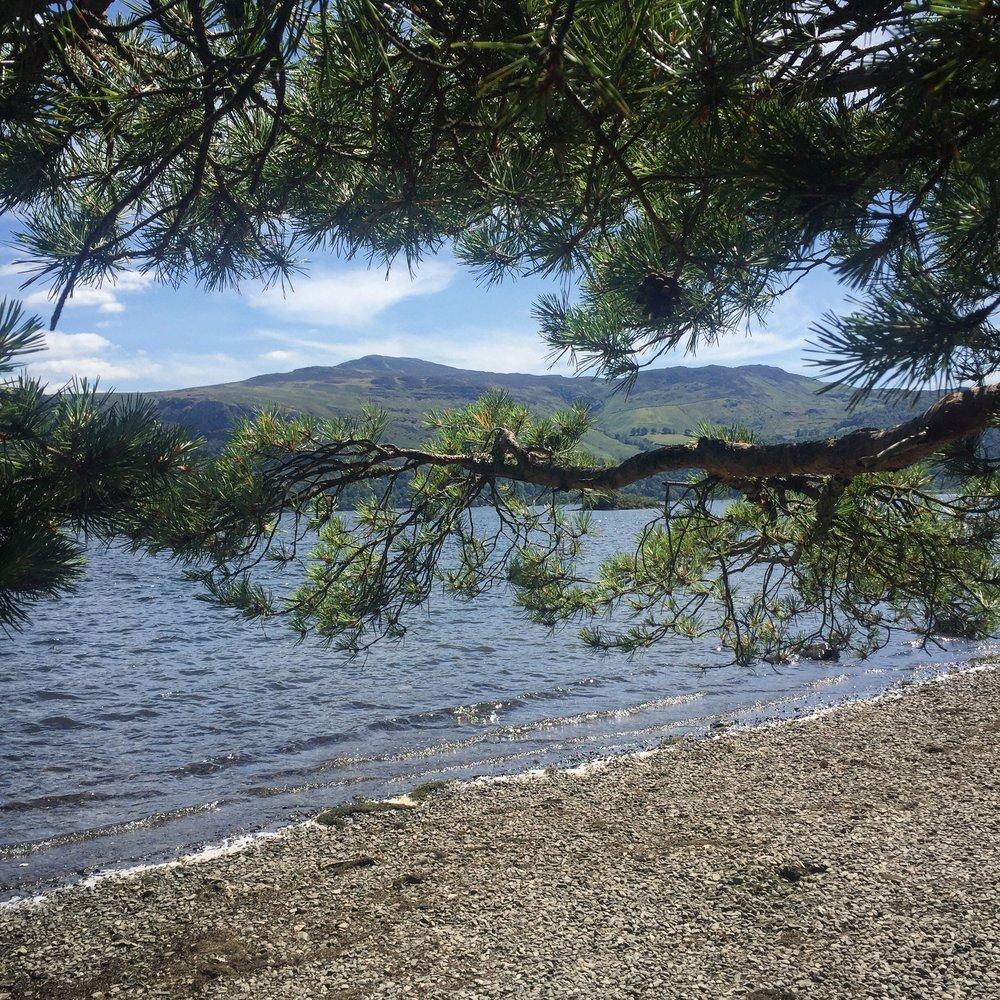 hawse lakeshore.JPG