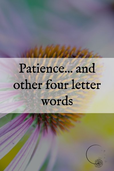 Patience_and_other_four_letter_words.jpg