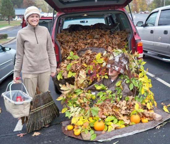 Autumn Splendor -