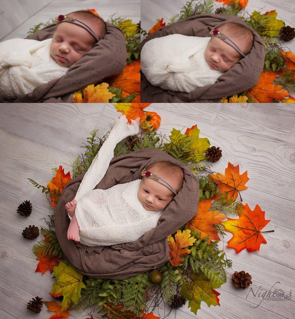 St. Joseph Michigan Newborn, Child and family Photographer_0315.jpg