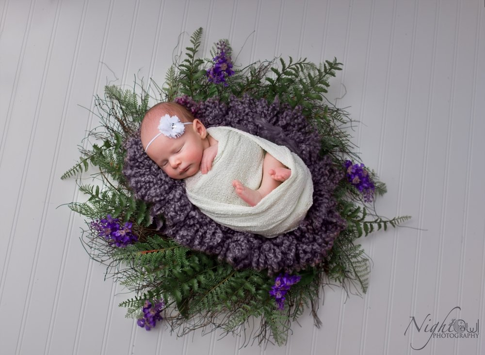 St. Joseph Michigan Newborn, Child and family Photographer_0390.jpg