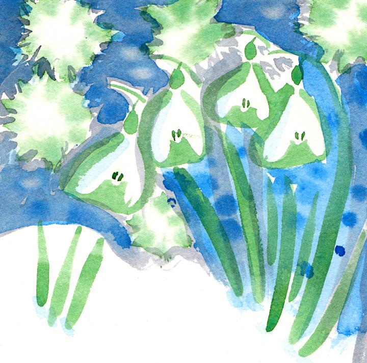 snow-drops-watercolour.jpg