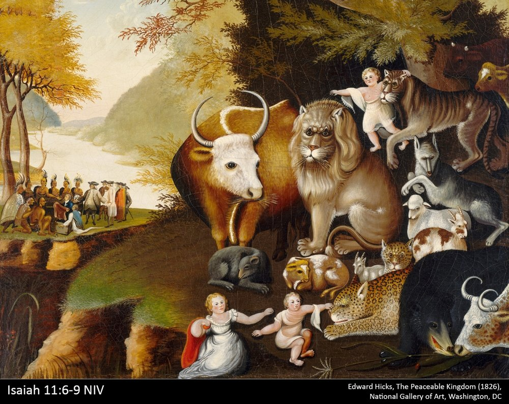The Peaceable Kingdom - Advent Series Christmas 2017December 3 - December 31 2017
