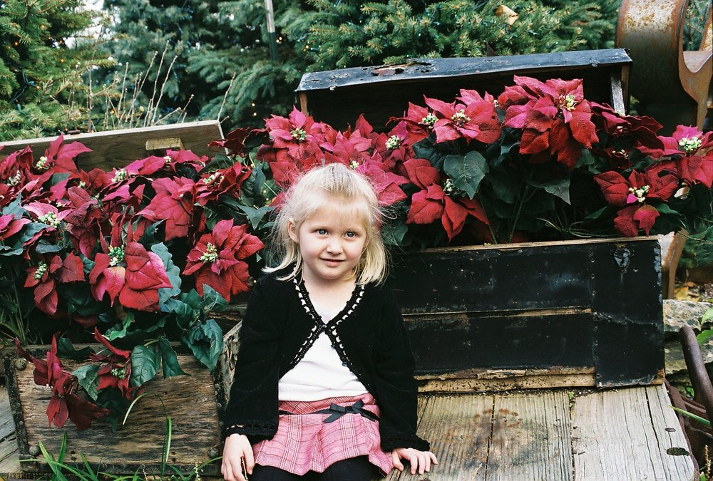 Christmas at Silver Dollar City. If you haven't been there at Christmas time, it is amazing. I highly recommend it!