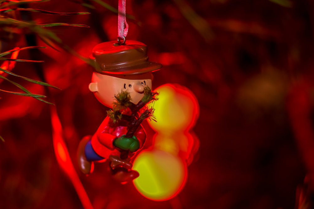 Christmas Ornaments (1 of 6).jpg