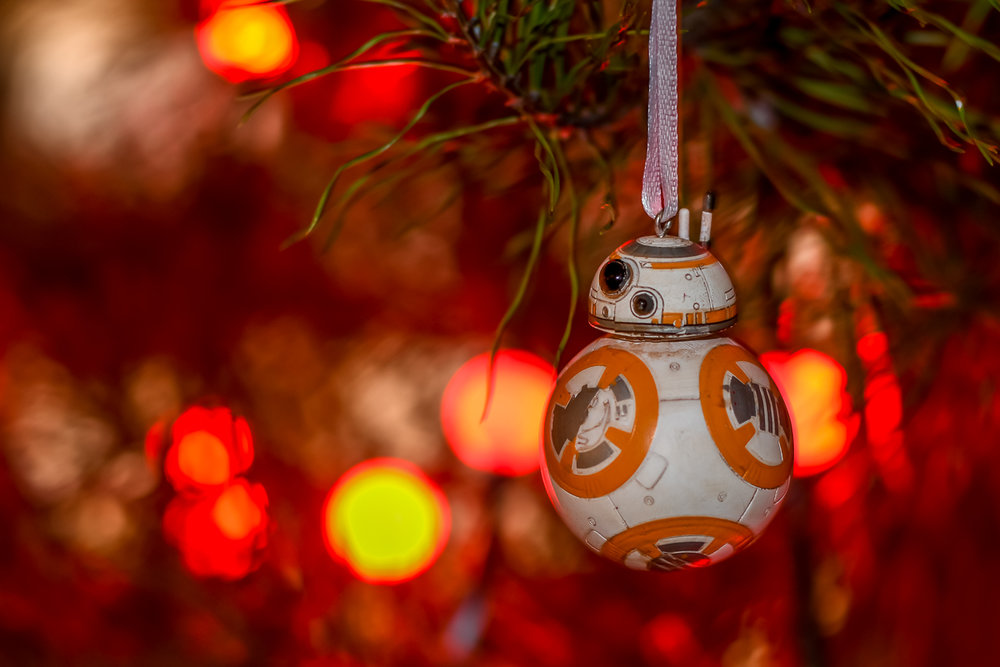 Christmas Ornaments (2 of 6).jpg