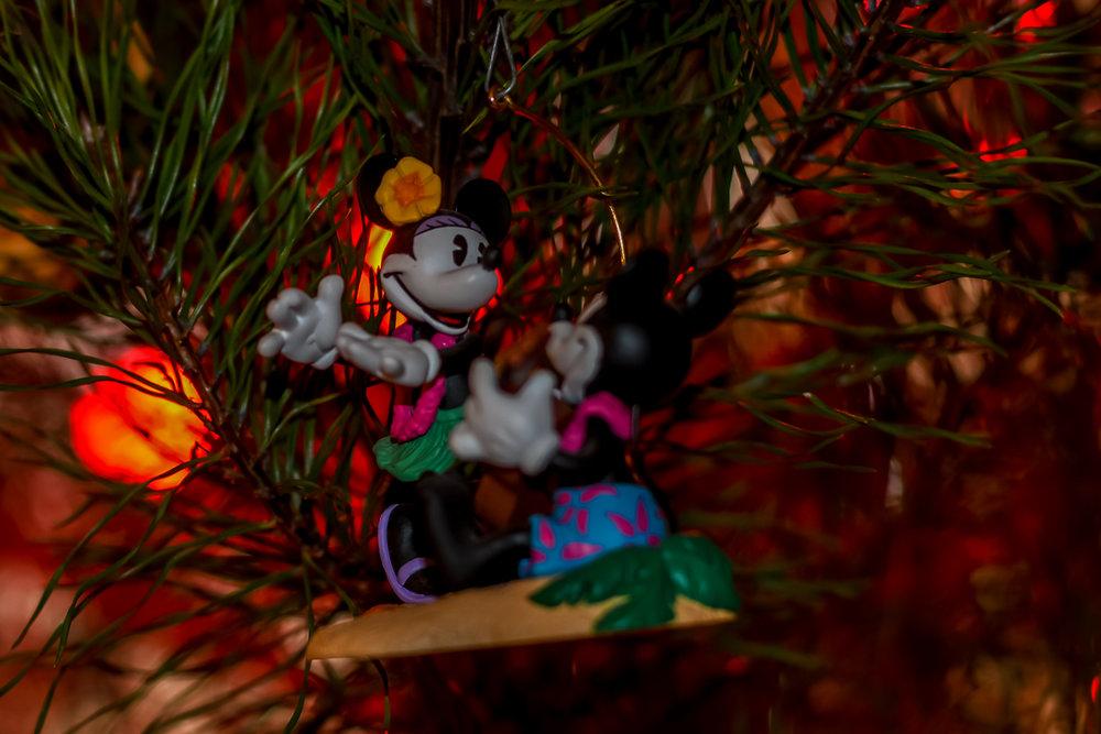 Christmas Ornaments (3 of 6).jpg