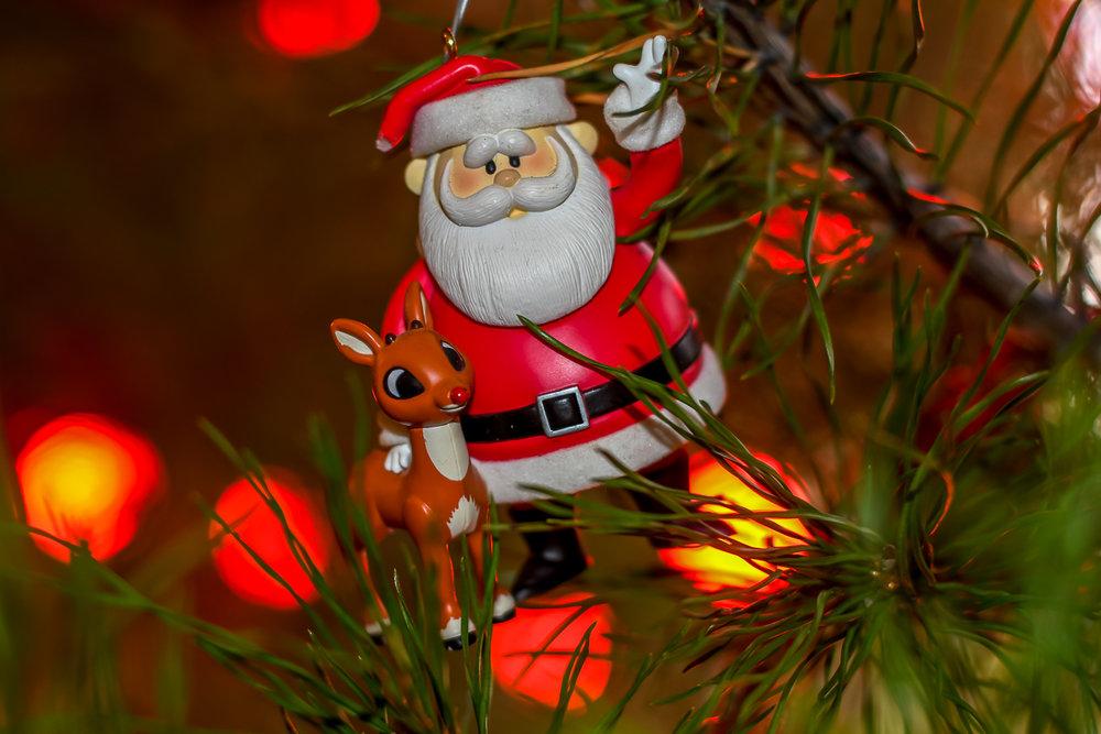 Christmas Ornaments (4 of 6).jpg