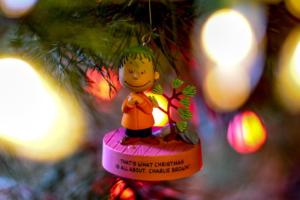 Christmas Ornaments (6 of 6).jpg