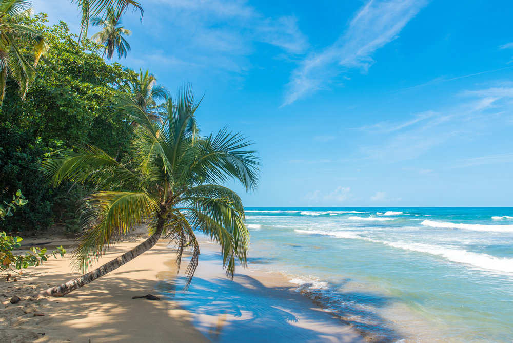 Surf the Pacific Costa Rica -