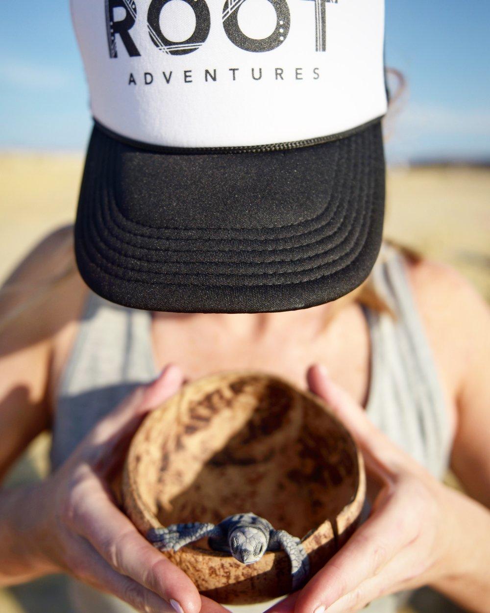 Releasing Sea turtles on the shores of Todos Santos