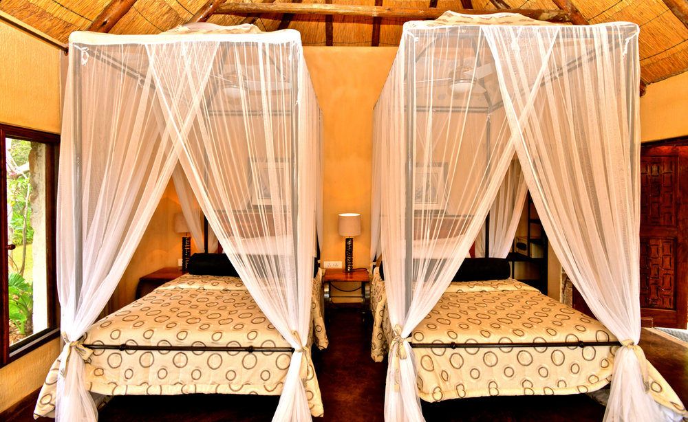 21. Imvelo Safari Lodges - Gorges Lodge - Twin Room.jpg