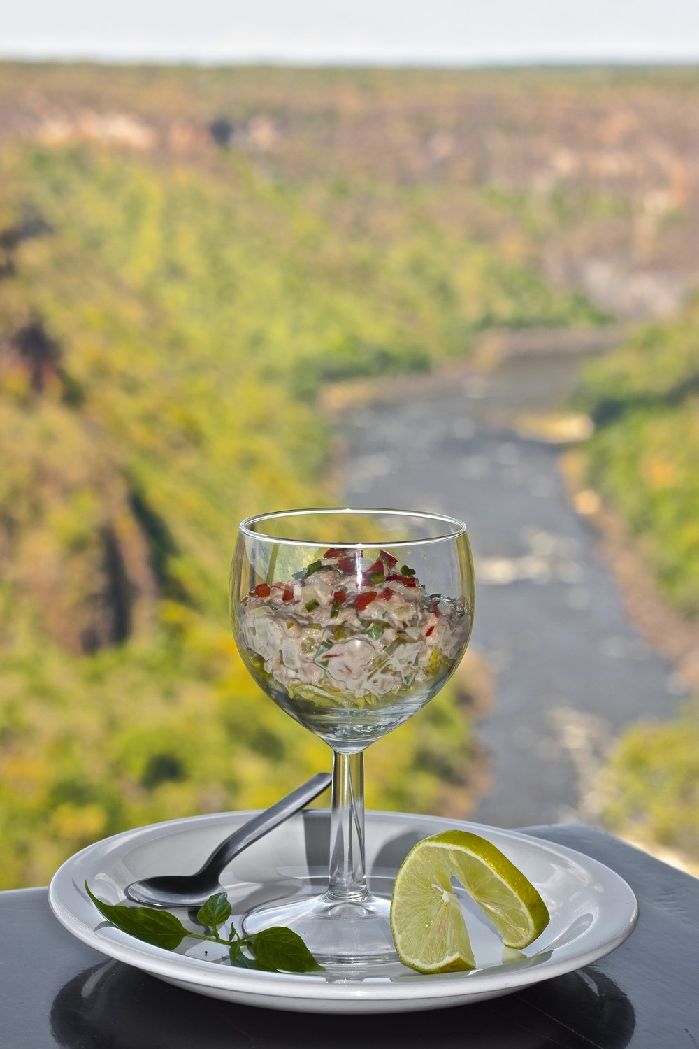 24. Imvelo Safari Lodges - Gorges Lodge - Lunch time starter and a view.jpg