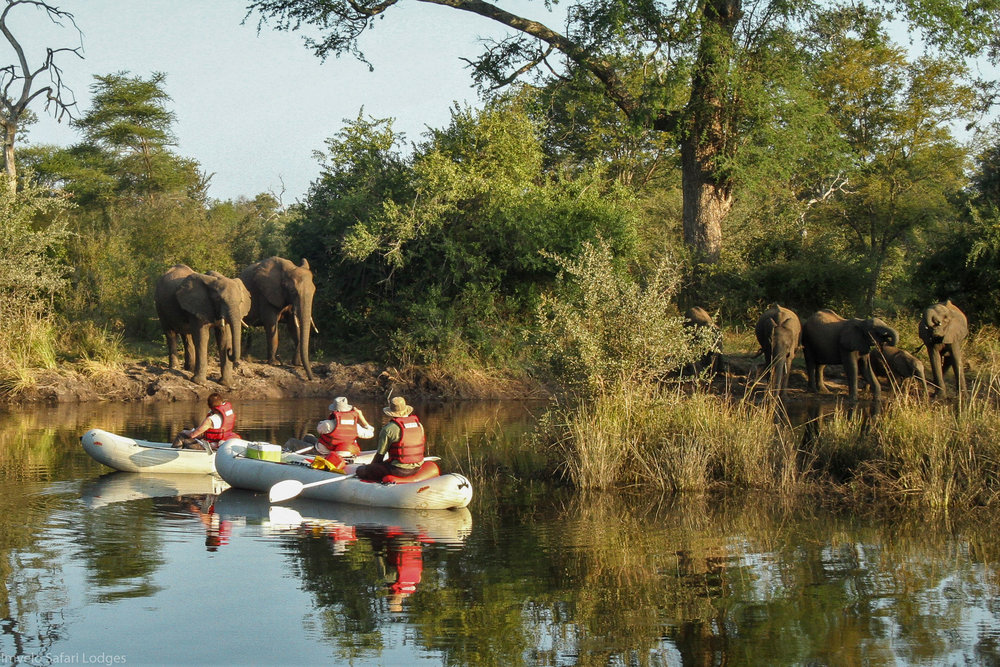 62 - Imvelo Safari Lodges - Zam Sands - Canoeing with the elephants.jpg
