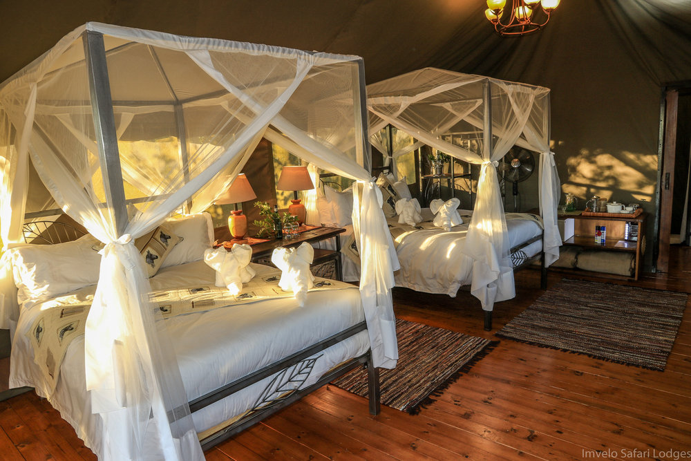 20b - Imvelo Safari Lodges - Bomani Tented Lodge - Interior view of a Saddlebill Tent.jpg