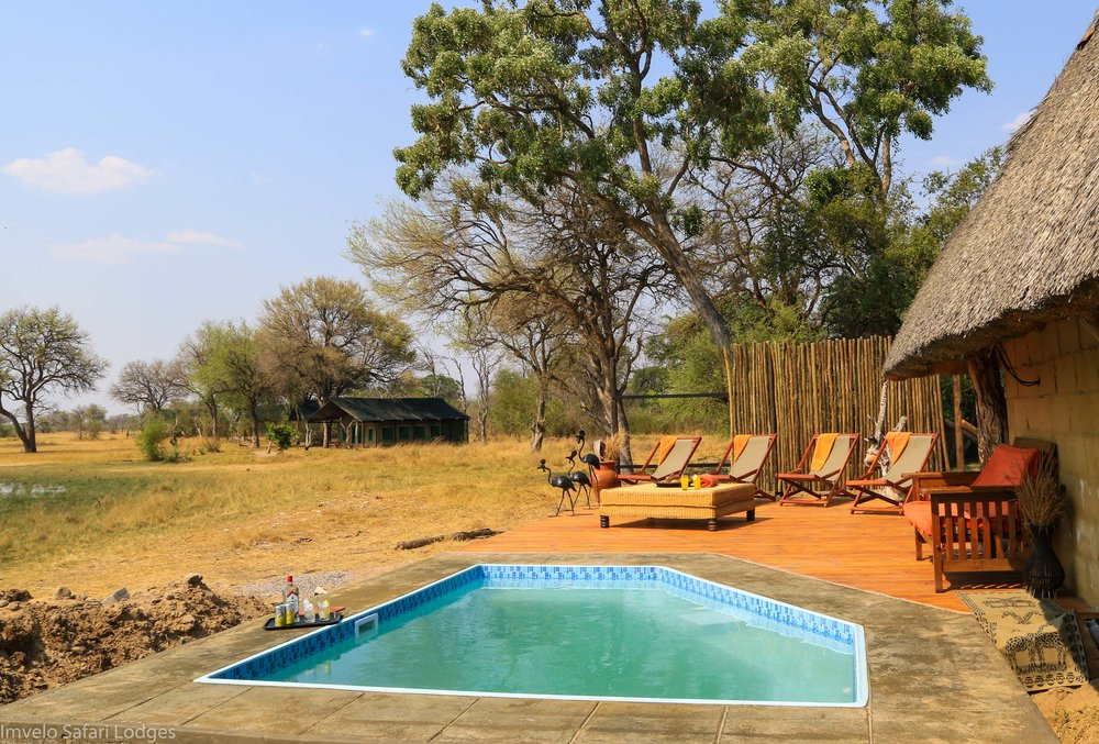 22c - Imvelo Safari Lodges - Bomani Pool.jpg