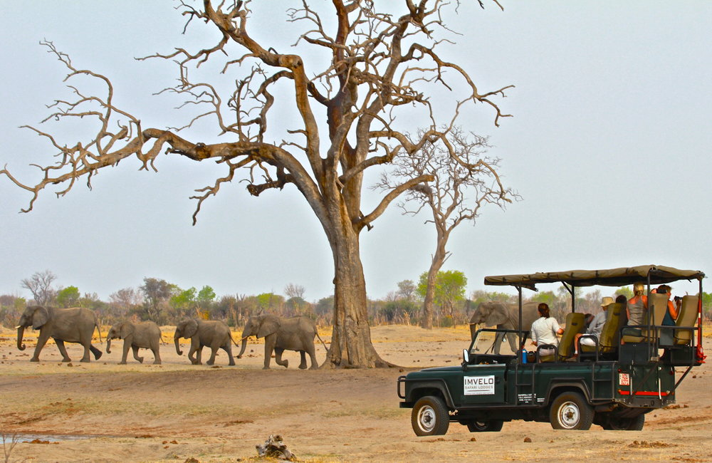 23. Imvelo Safari Lodges - Bomani Tented Lodge - Game viewing by Land Rover.jpg