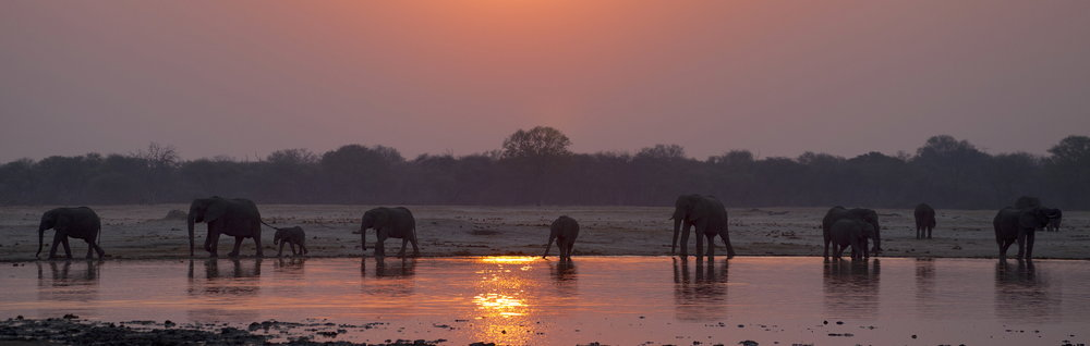 33. Imvelo Safari Lodges - Bomani Tented Lodge - Sunset at Ngamo.jpg