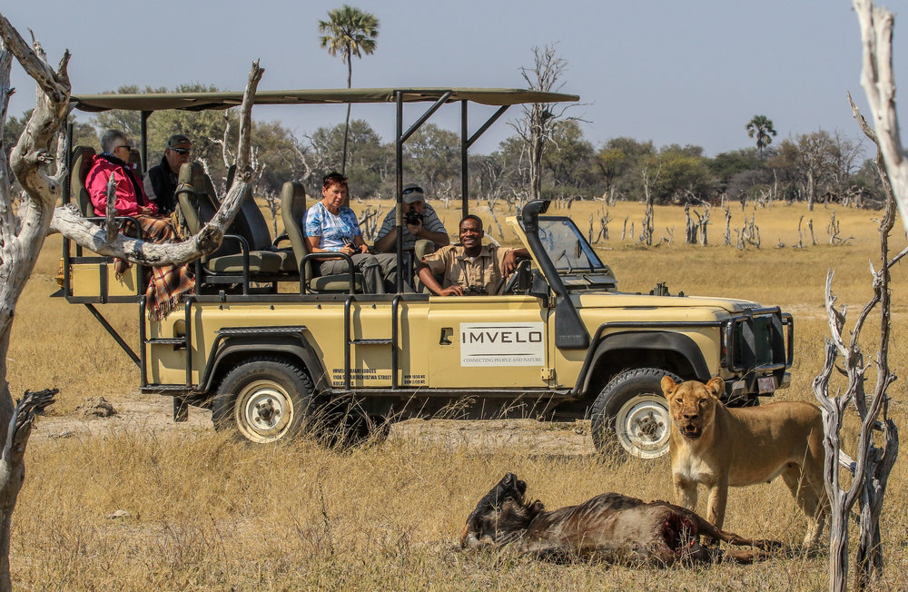 52d - Imvelo Safari Lodges - Bomani - On the Ngamo plains.jpg