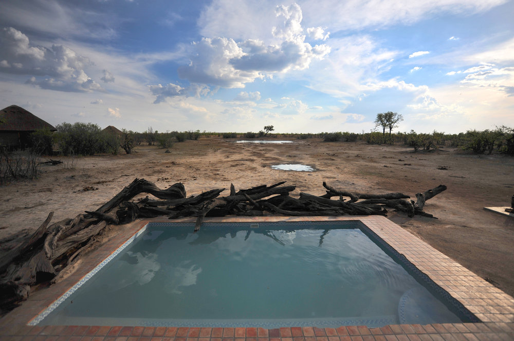 11. Imvelo Safari Lodges - Nehimba- Swimming Pool.jpg