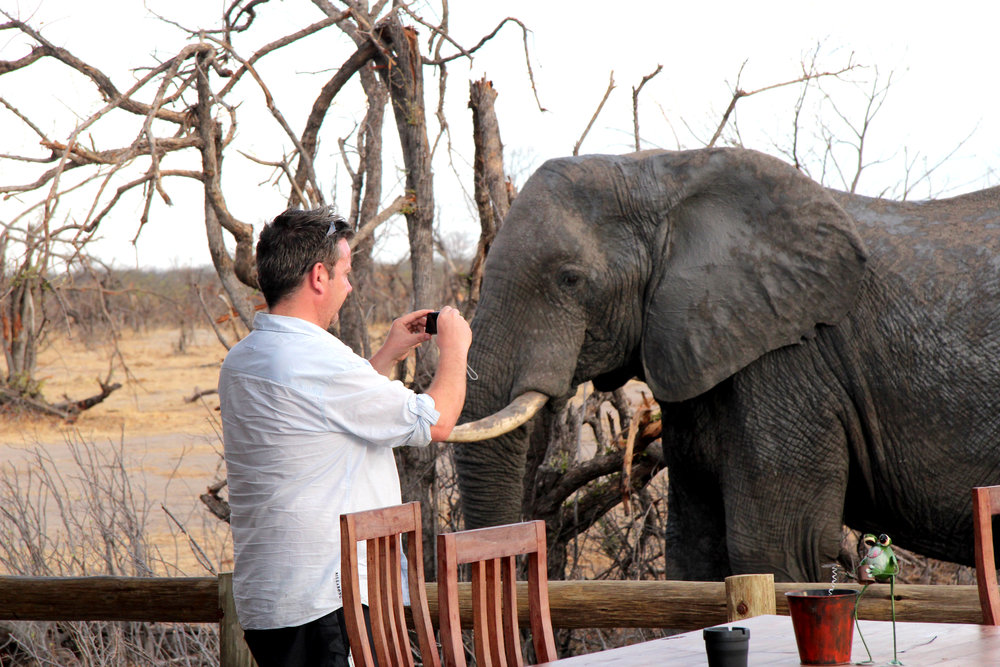 19. Imvelo Safari Lodges - Nehimba - photographing elephants in camp.jpg