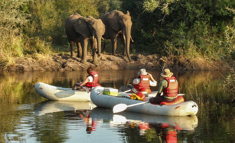 Exploring by canoe gives us the opportunity to have an intimate view of the wildlife.    Overnight: Zambezi Sands River Camp   Meals: B | L | D