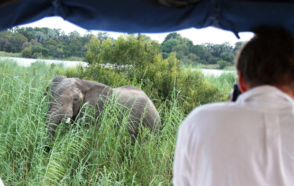 34. Imvelo Safari Lodges - Zambezi Sands River Camp - Elephant photography on a sundowner cruise.jpg